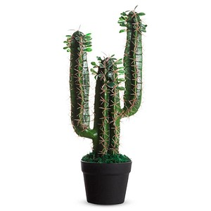 PAPERFLOW Kunstpflanze Kaktus 60,0 cm Höhe