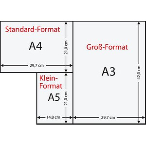 Rainbow Kopierpapier COLOURED PAPER hellchamois DIN A3 80 g/qm 500 Blatt