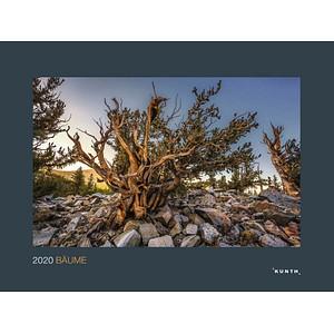 Kunth Monats-Wandkalender Bäume 2020 978-3-95504-870-9