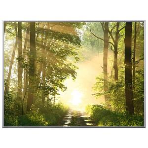 PAPERFLOW Wandbild Wald