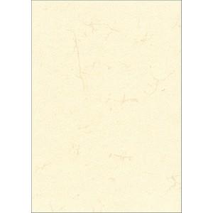 RNK-Verlag Motivpapier Elefantenhaut chamois DIN A3 190 g/qm 10 Blatt