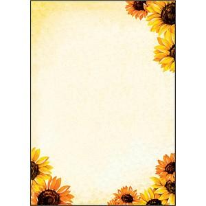 SIGEL Motivpapier Field of Sun Motiv DIN A4 90 g/qm 50 Blatt DP129